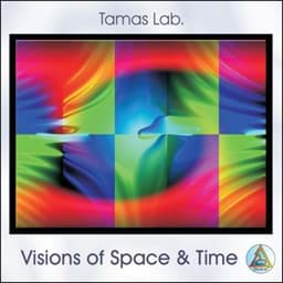 Bild von Visions of Space and Time (Tamas Lab.)